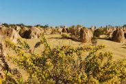 pinnacles desert #3